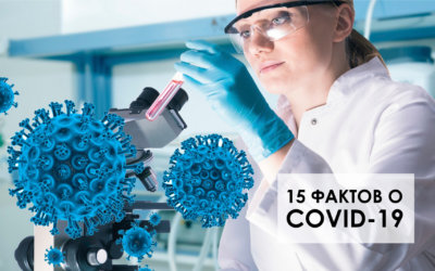 15 фактов о коронавирусе, о которых знают не все