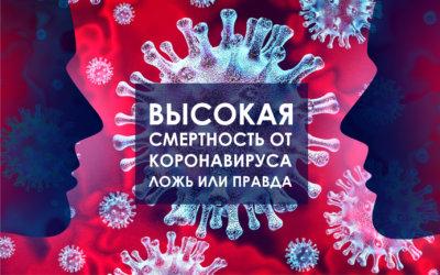 Занижена ли смертность от коронавируса в России? Как считается статистика?